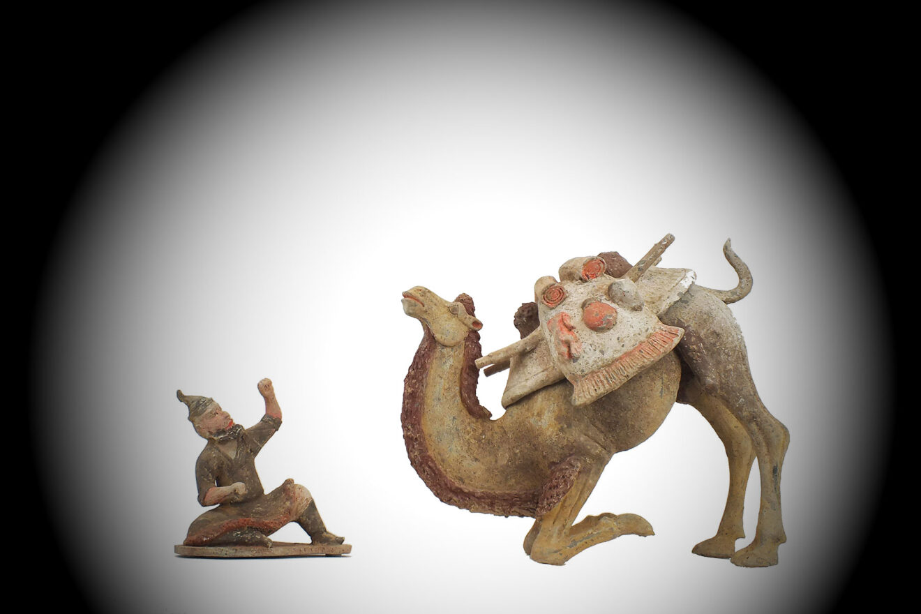 Tang Dynasty Crouching Bactrian Camel (1)