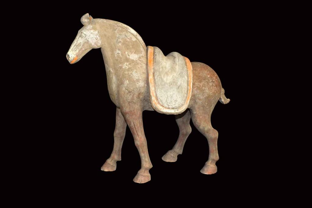 Rare Tang Dynasty Horse