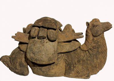 Rare Bactrian Camel (1)