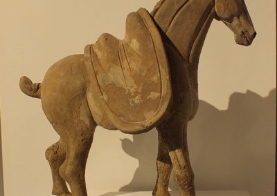 Tang Dynasty Horse (11)