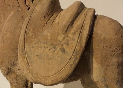 Tang Dynasty Horse (3)
