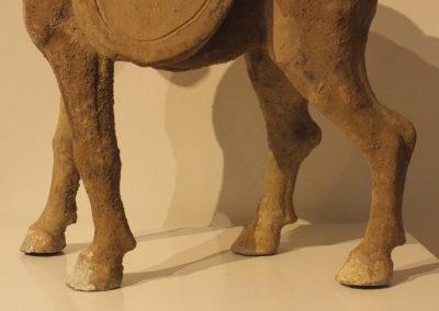 Tang Dynasty Horse (5)