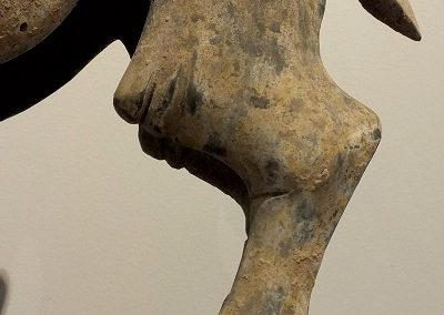 Rare Large Crouching Bactrian Camel (16)