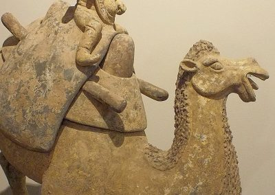 Rare Large Crouching Bactrian Camel (18)