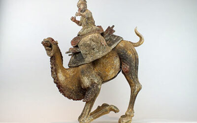 Extremely Rare Bactrian Camel