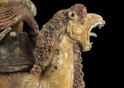 Extremely Rare Bactrian Camel (41)