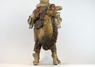 Extremely Rare Bactrian Camel (43)