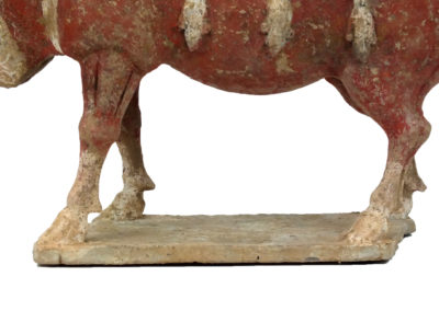 Large Outstanding Pottery Ox (5)
